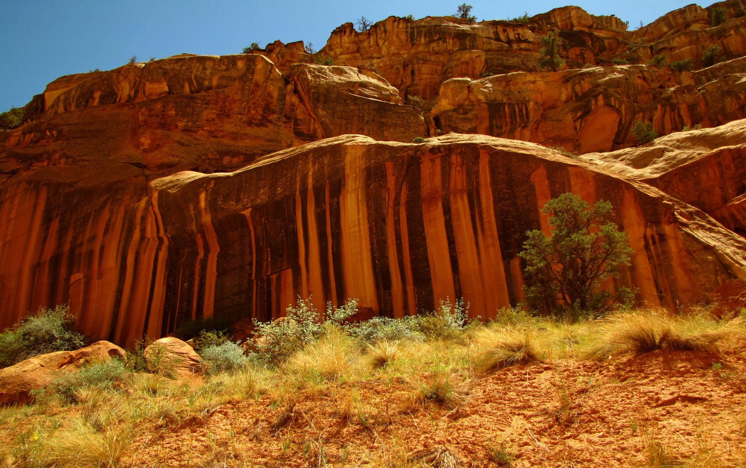 Utah National Parks Capitol Reef HD Wallpaper Background Images 2448x1536