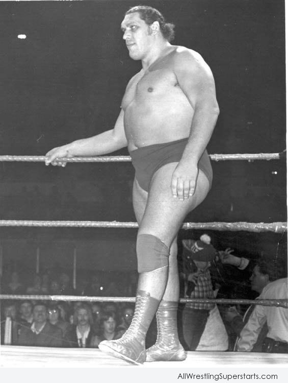 Andre The Giant   WWE Superstars WWE Wallpapers WWE PPVs 565x750