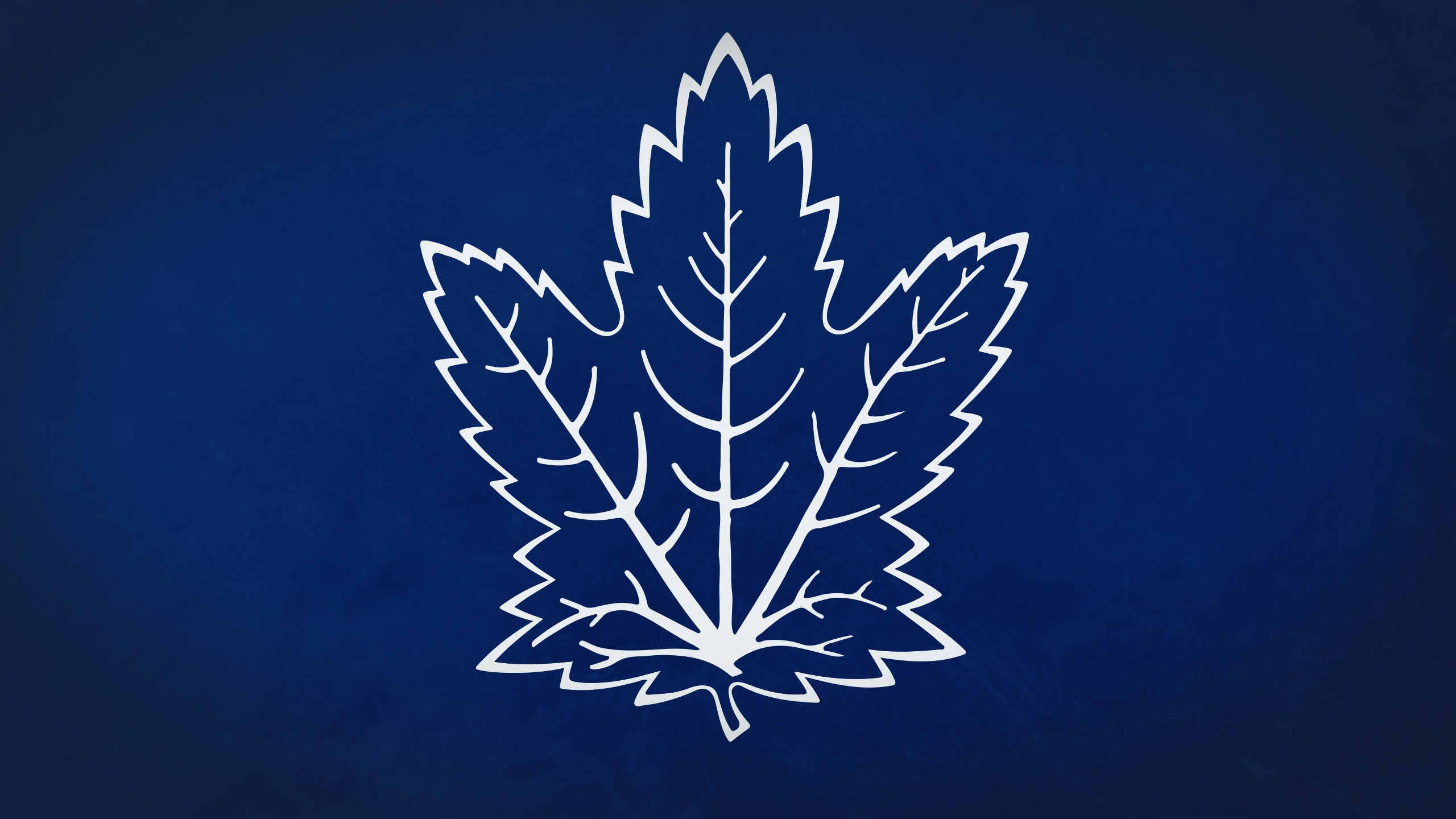 Toronto Maple Leafs Images TheCelebrityPix 2560x1440