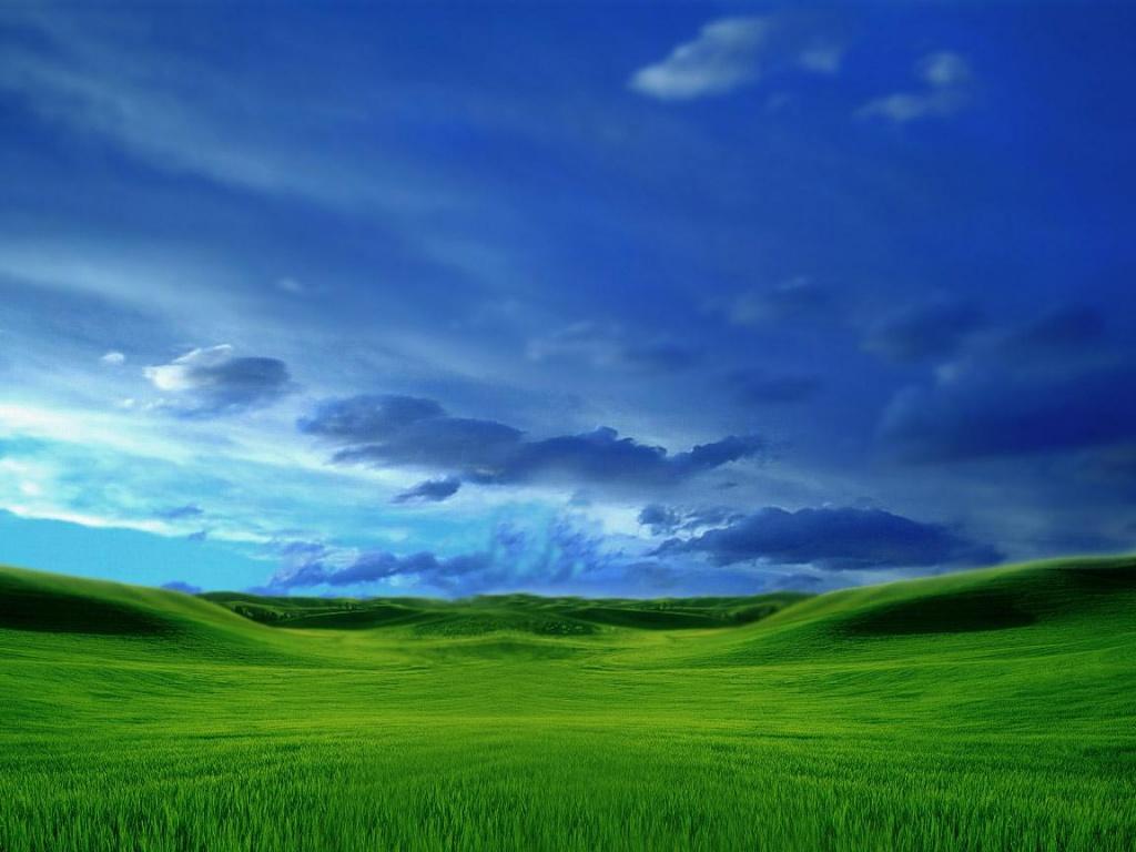 Green Grass Blue Sky Wallpaper   Desktop Background Wallpapers 1024x768