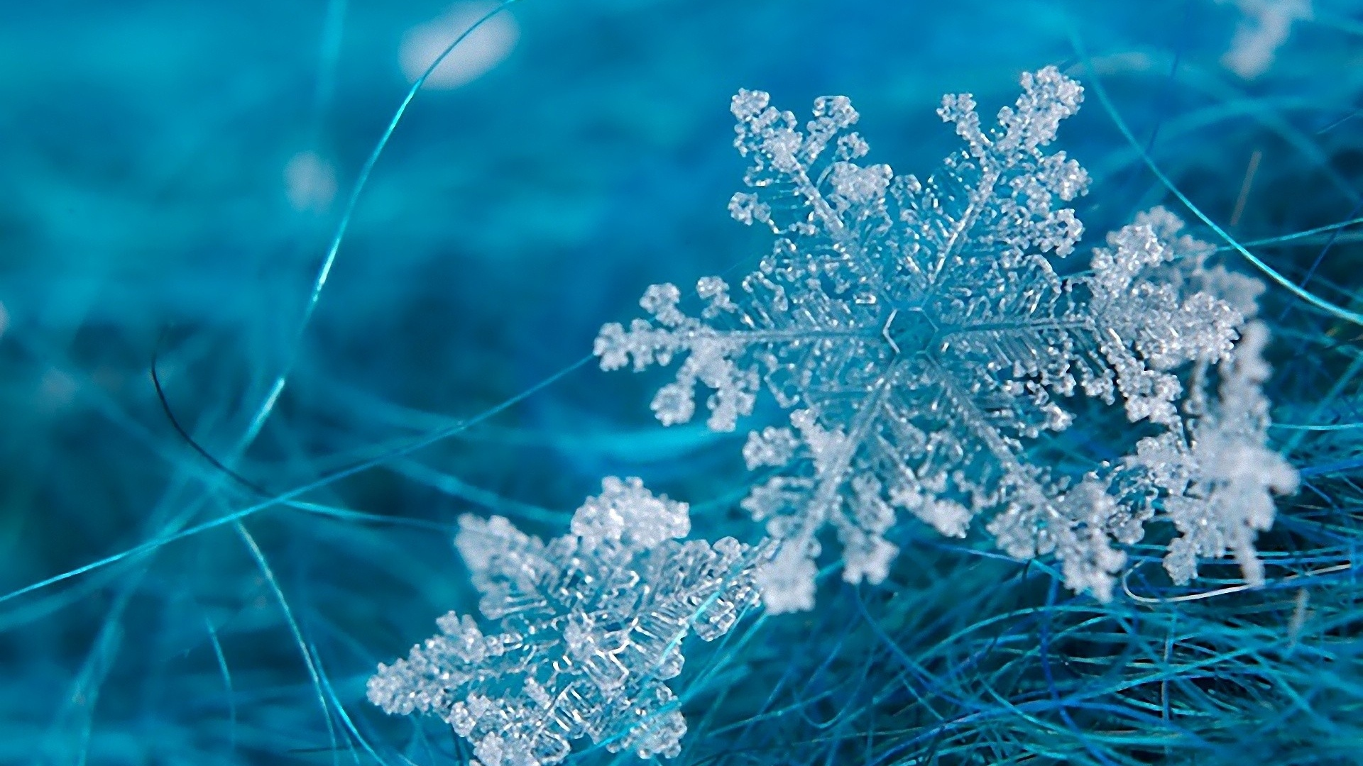 Snowflake Wallpaper Wallpapersafari