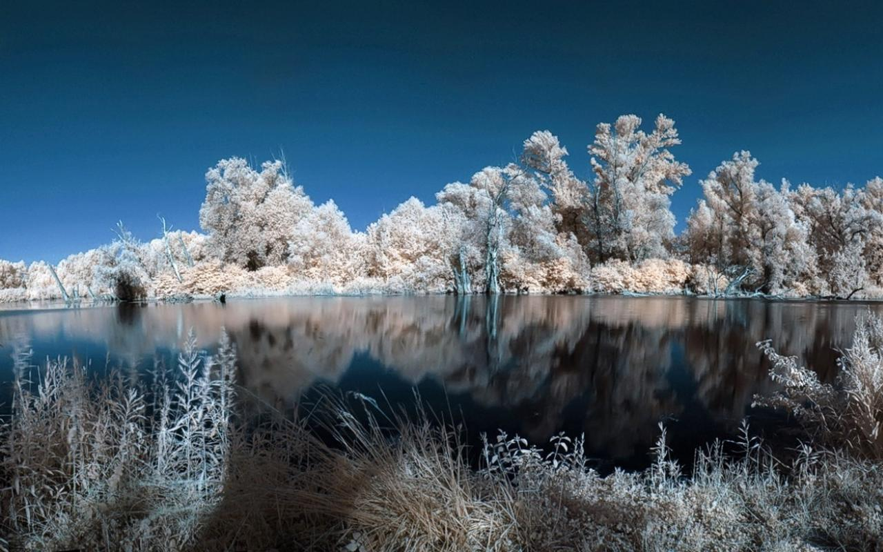 Water landscapes nature winter trees white lakes wallpaper 73351 1280x800