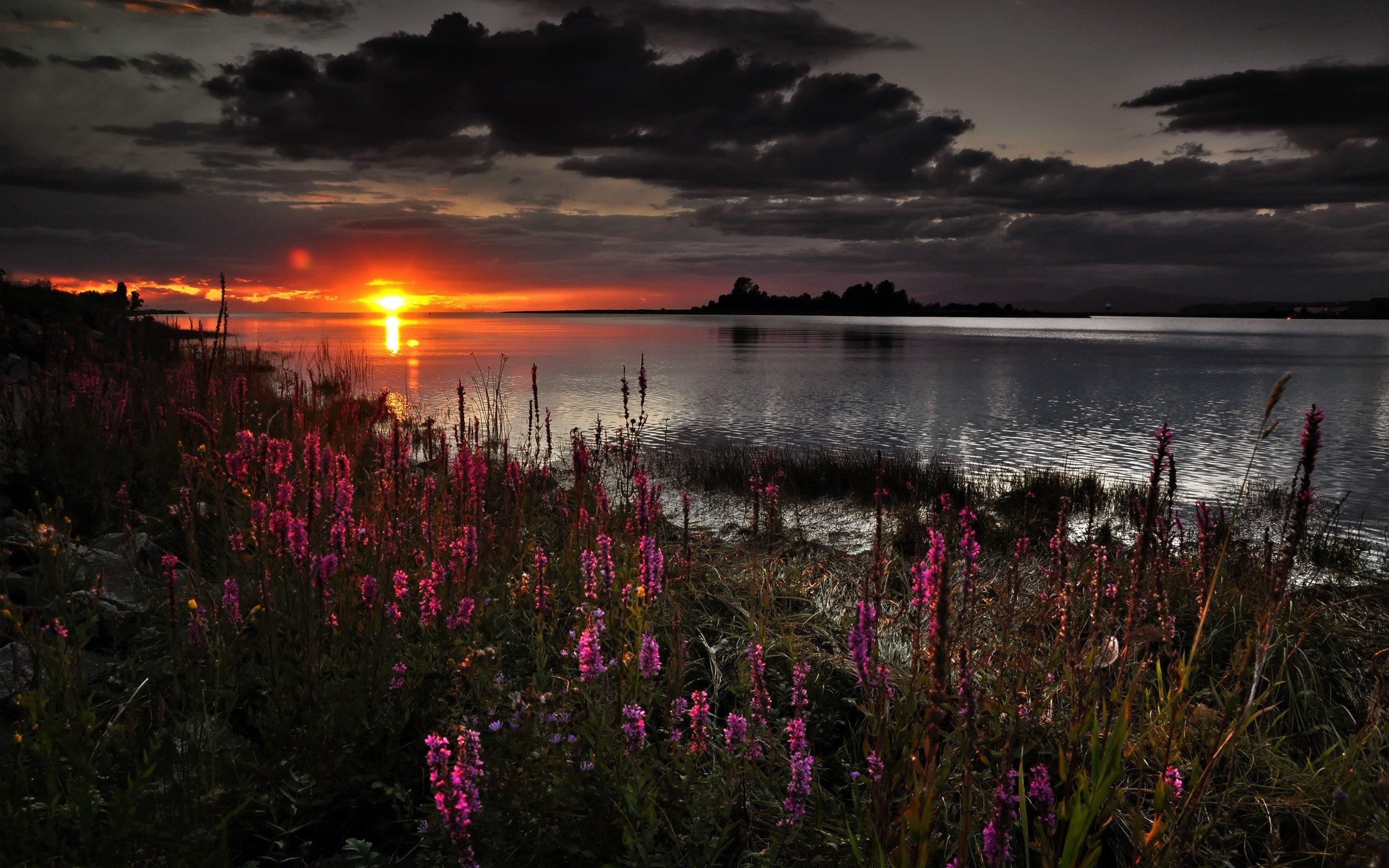 Темный закат над озером  № 3213545 загрузить