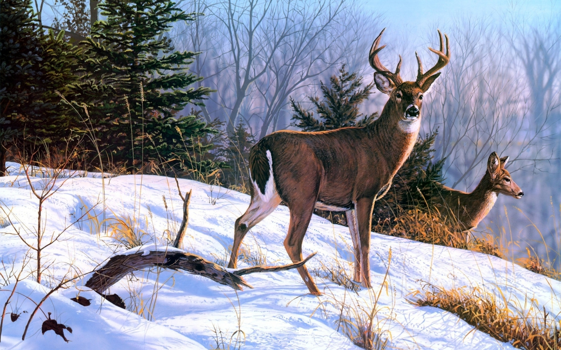 Deer art nature paintings winter wallpaper 1920x1200 29059 1920x1200