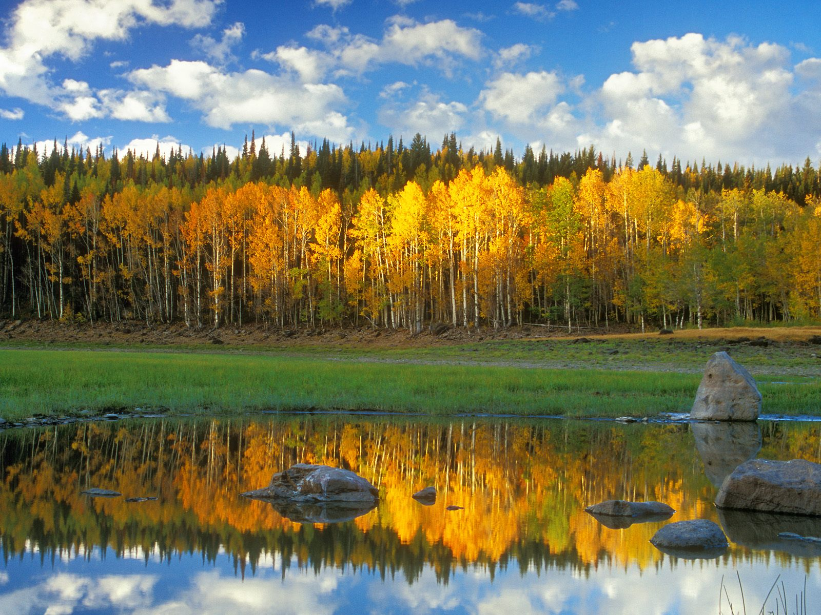 autumn scene wallpaper 1600x1200