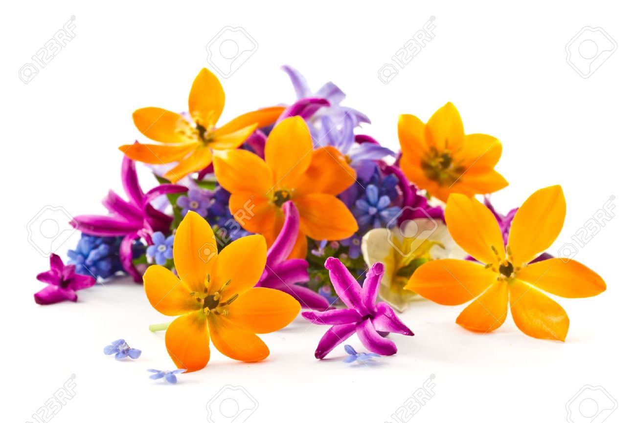 Beautiful Bouquet Of Spring Flowers On A White Background Stock 1300x866