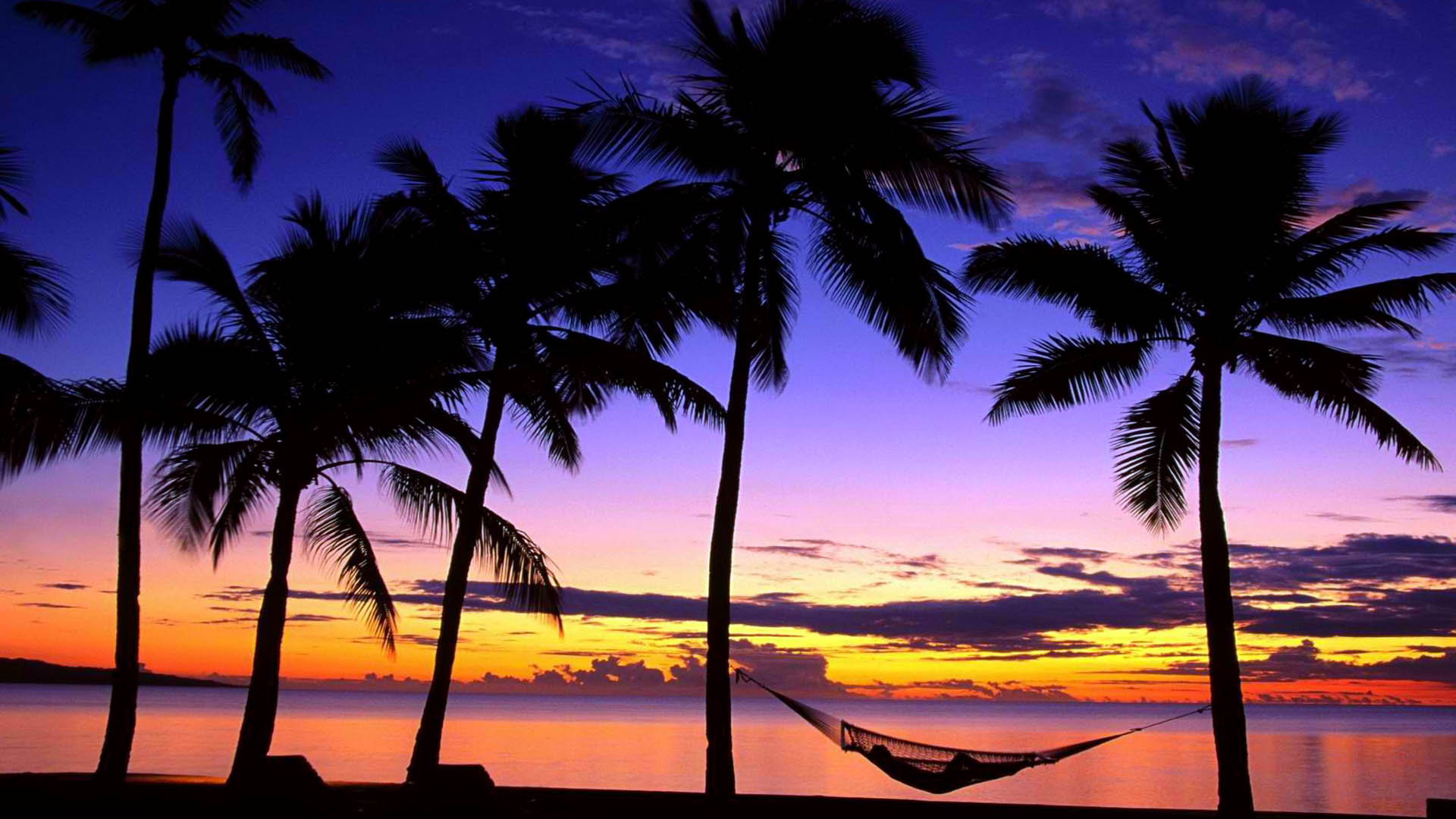 Hawaii Backgrounds Group (79 )