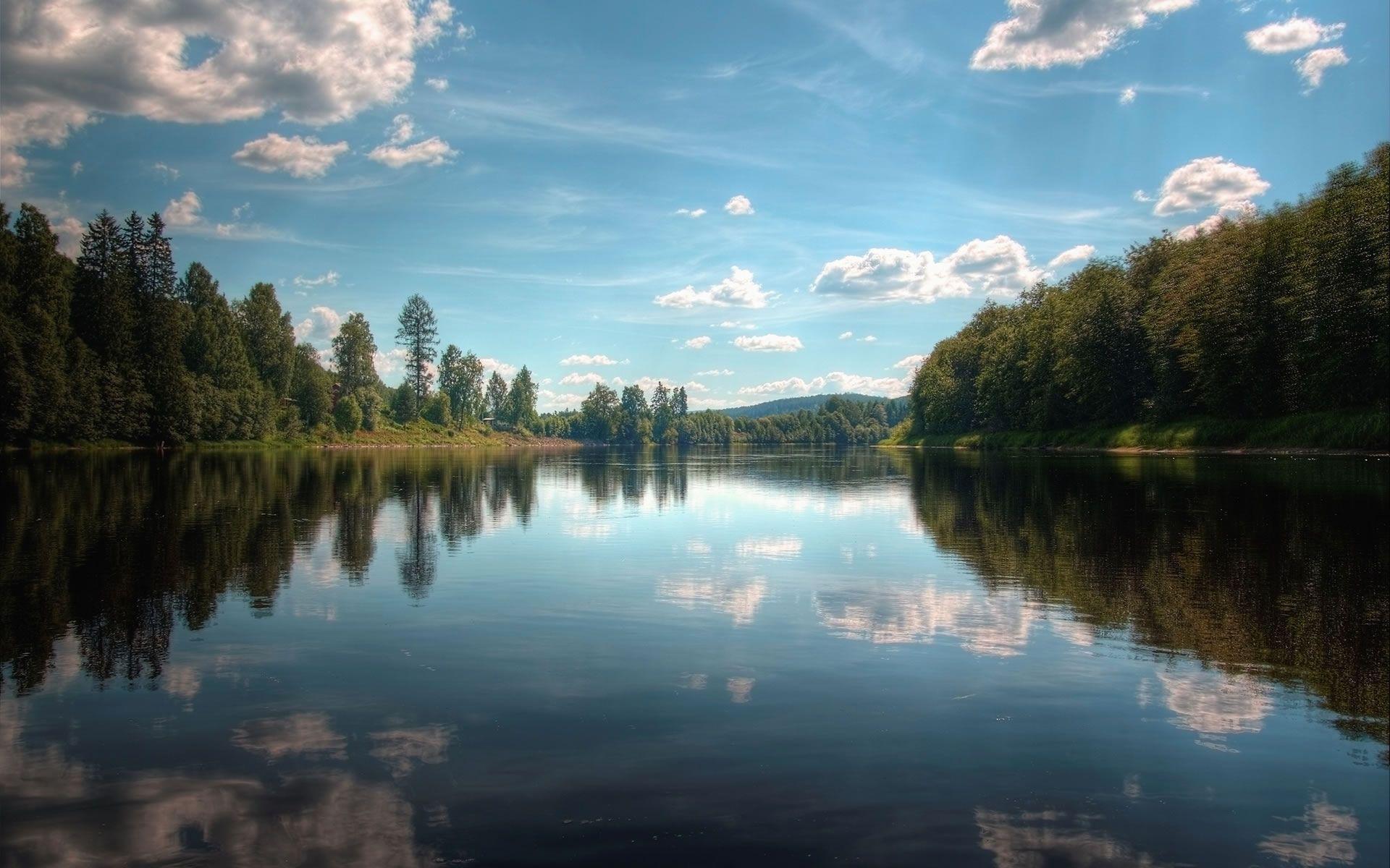 River in Forest Wallpaper - WallpaperSafari
