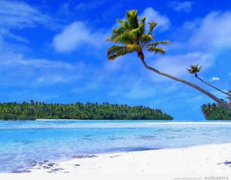 beach wallpaper beach desktop beach desktop backgrounds beach 800x624