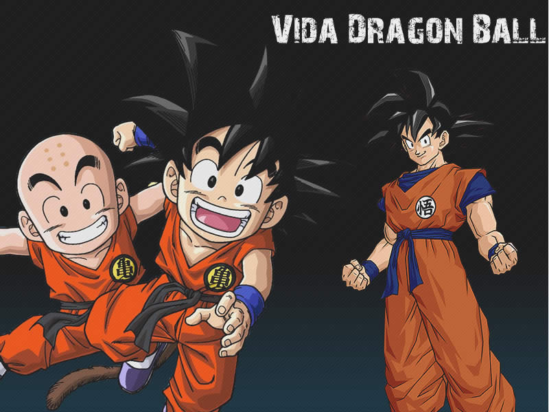Goku y Krillin Promocionando Dragon Ball Anime Manga Wallpaper 800x600