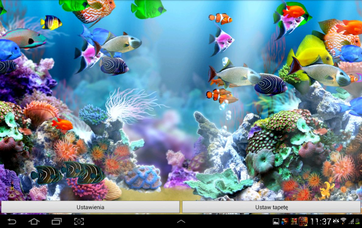 Aquarium live wallpaper windows 10 wallpapersafari for Aquarium fish online