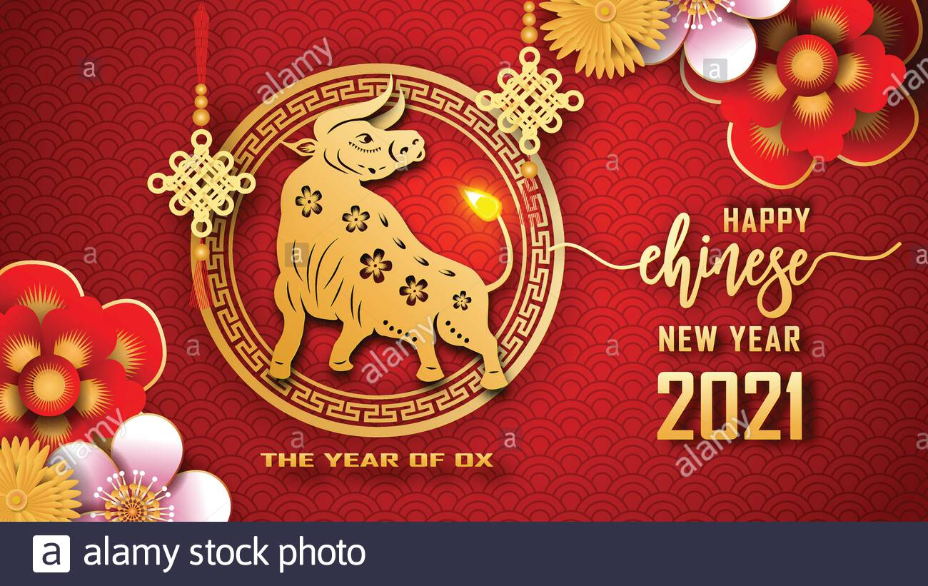 Happy Chinese new year 2021 The year of the Ox Chinese new year 1300x821