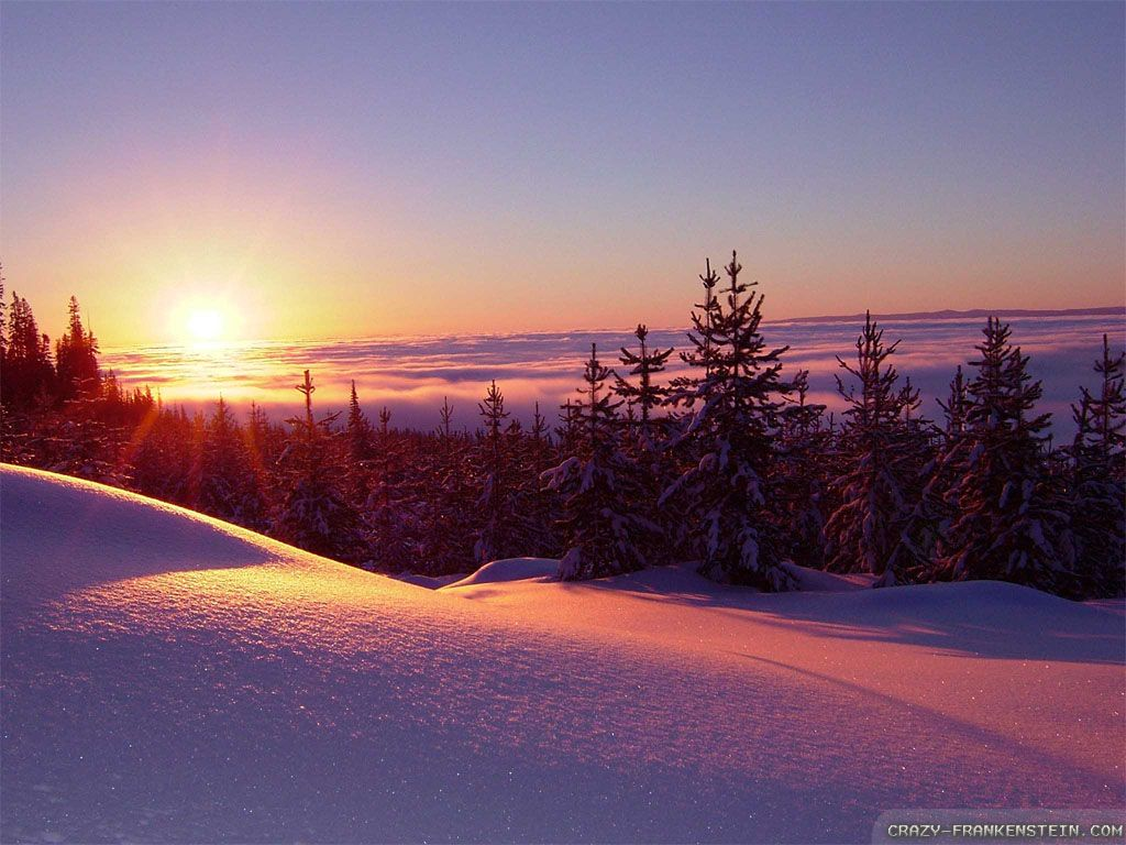 45 Winter Snow Sunset Wallpapers   Download at WallpaperBro 1024x768