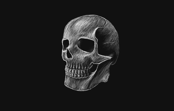 Wallpaper skull skeleton head dark background wallpapers minimalism 596x380