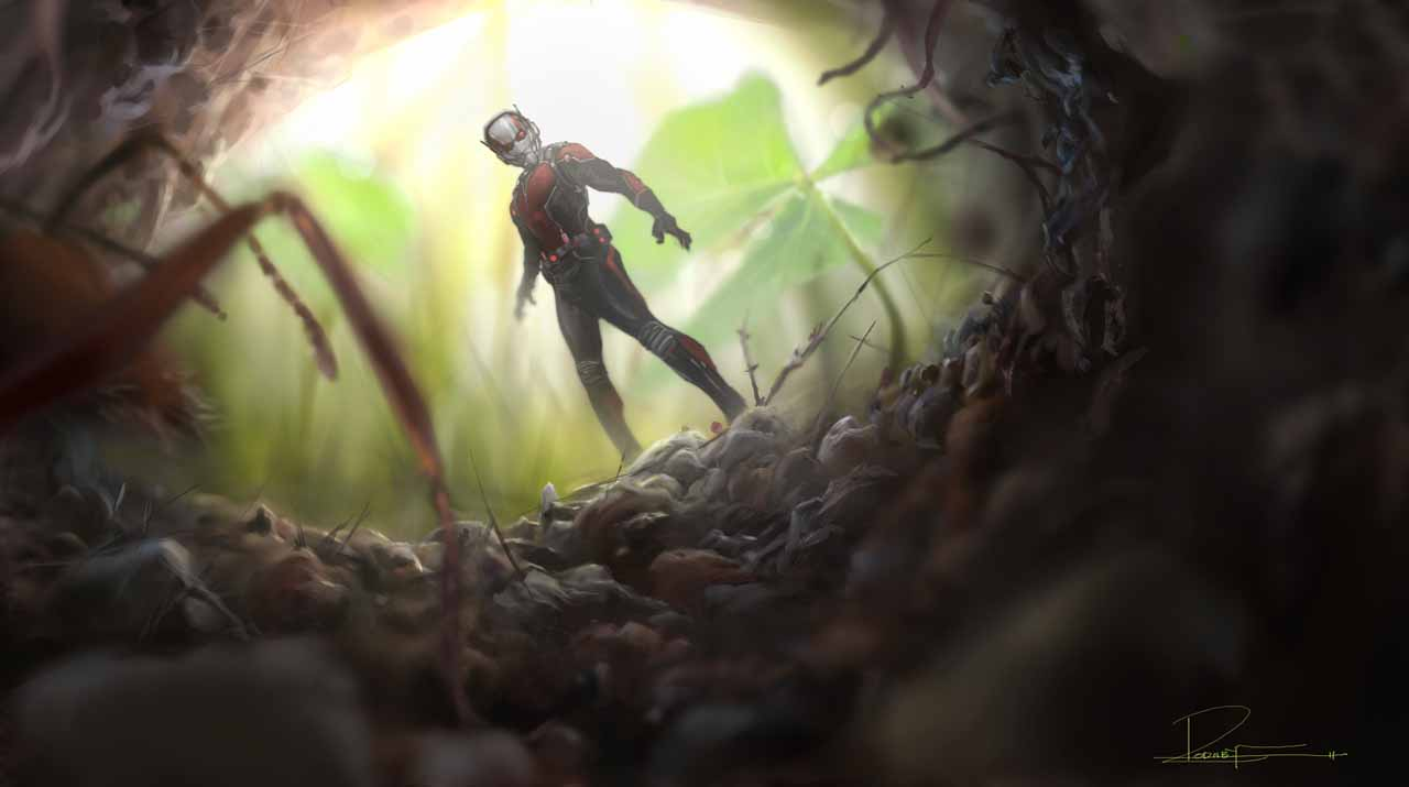 Free Download The Ant Man Inside Of The Anthill Wallpaper
