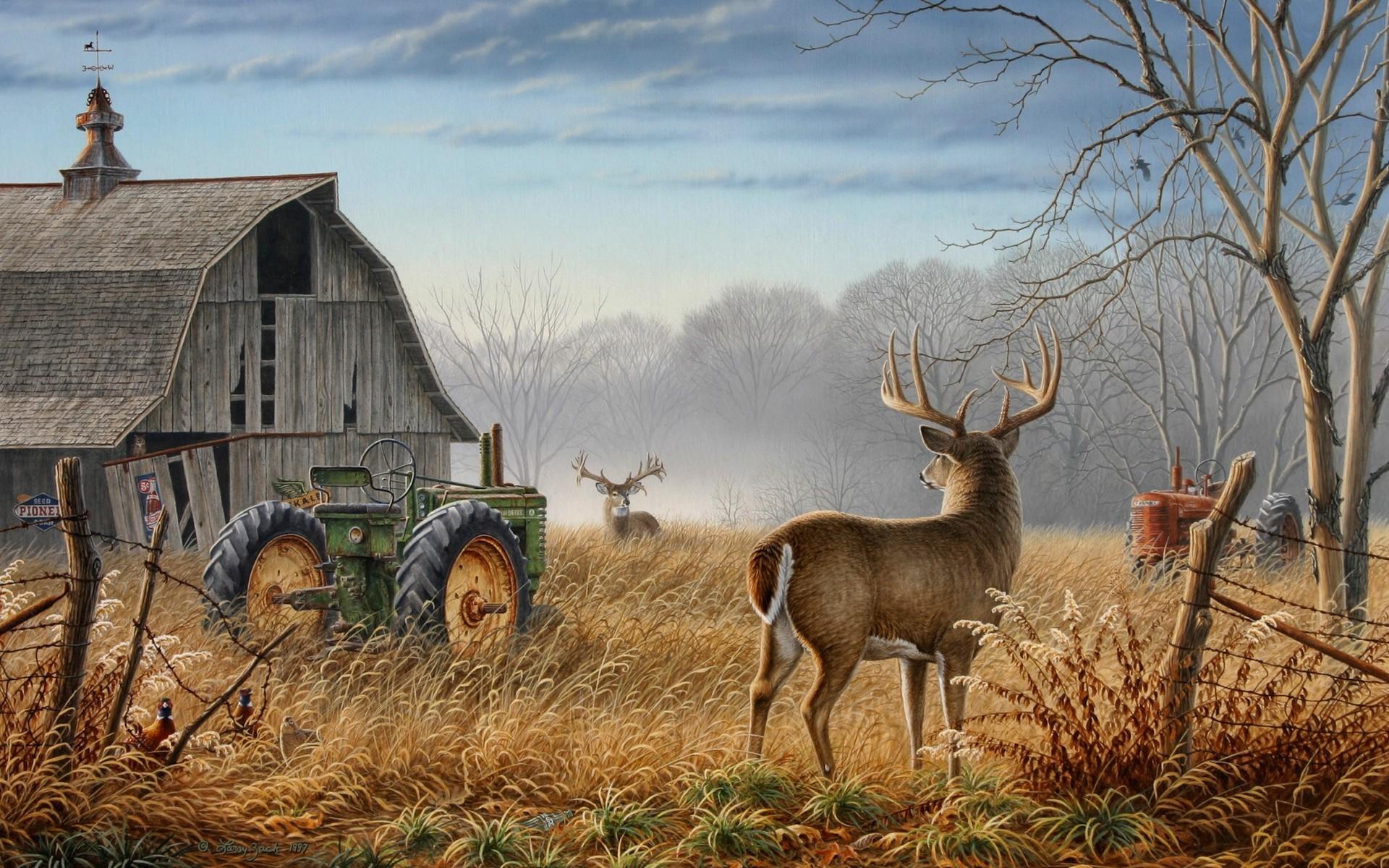 Animals Tractors Wallpaper 1920x1200 Animals Tractors Artwork 1920x1200