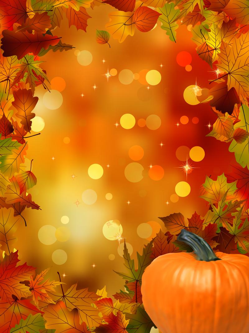 63+ Fall Pumpkin Wallpaper on WallpaperSafari