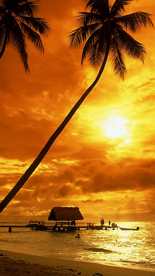 Tropical sunset wallpaper   Beach Wallpapers 540x960