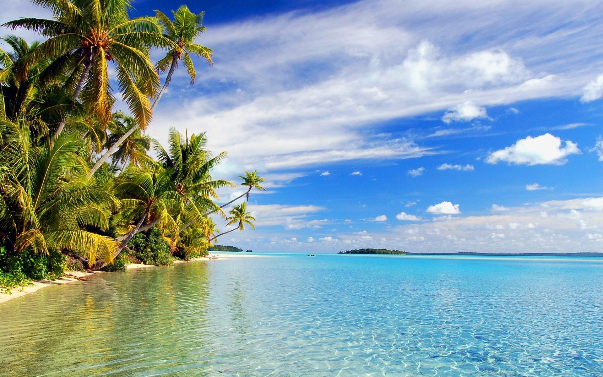 tropical papis de parede 1920x1200 descrio praia tropical 1920x1200