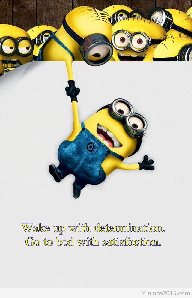 art cool art funny art funny art wallpaper minion wallpaper funny 640x993