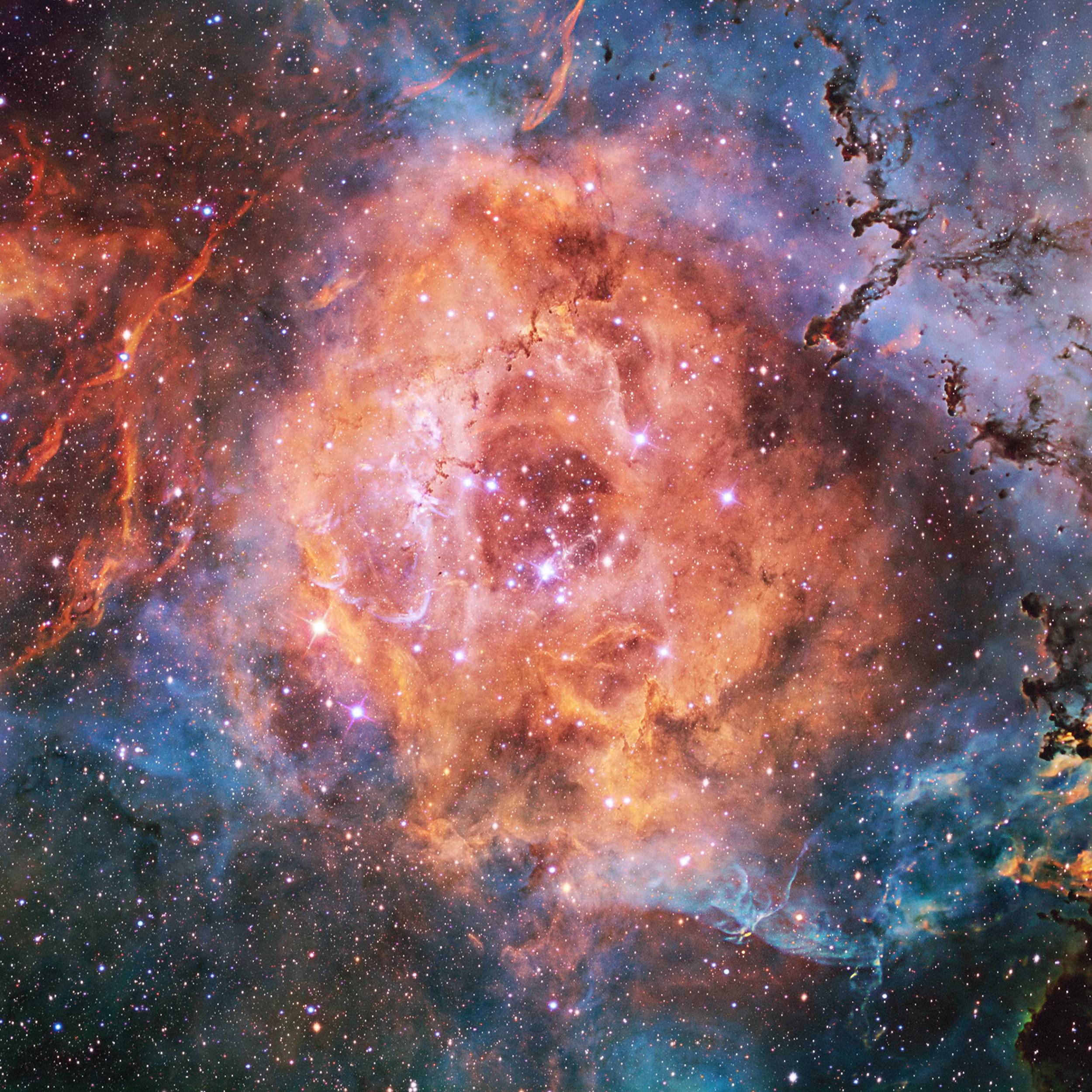 Cosmos Wallpaper - WallpaperSafari