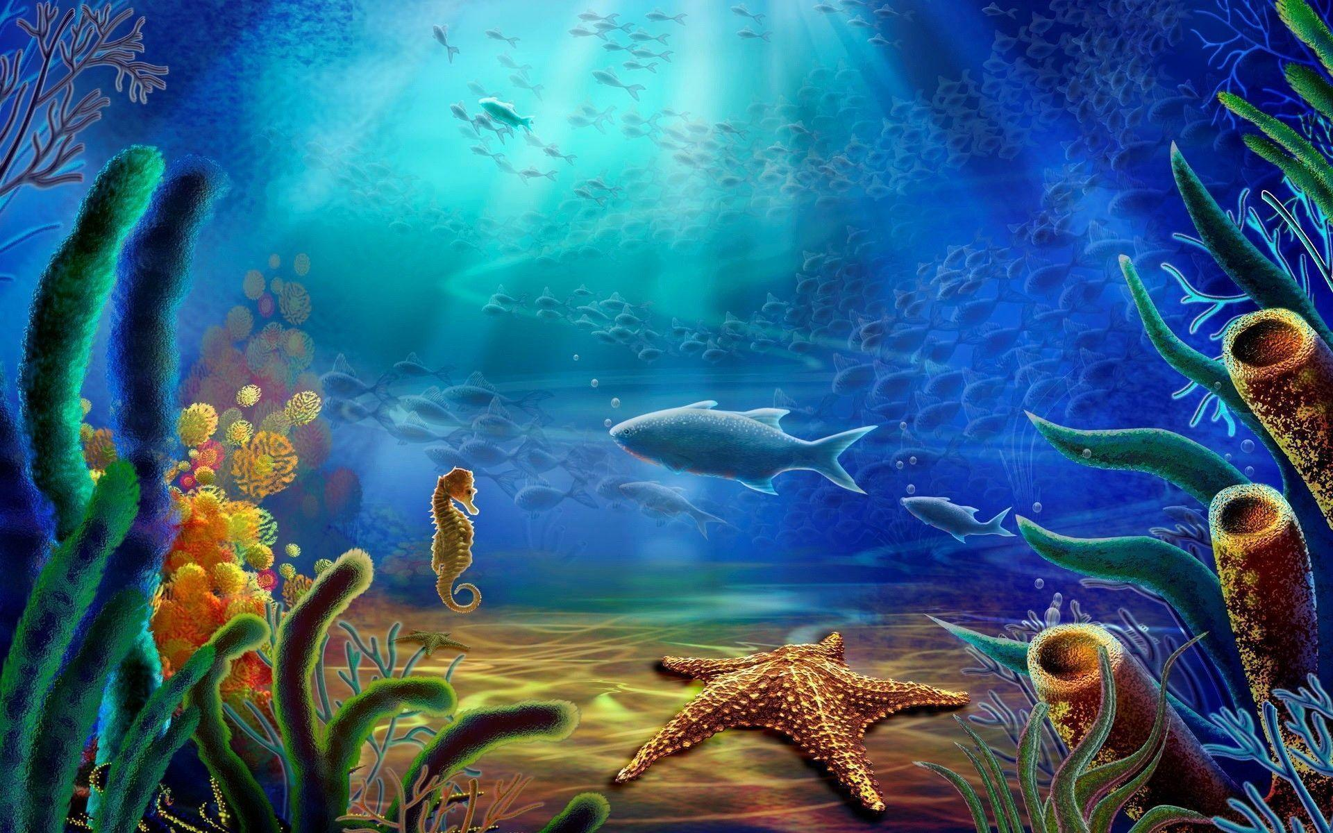 Ocean Life Wallpapers 1920x1200