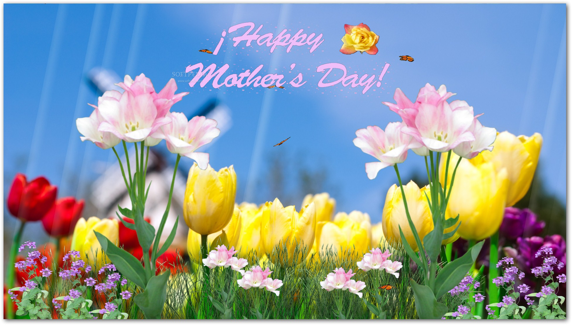 Happy Mothers Day Screensaver Download 1952x1112