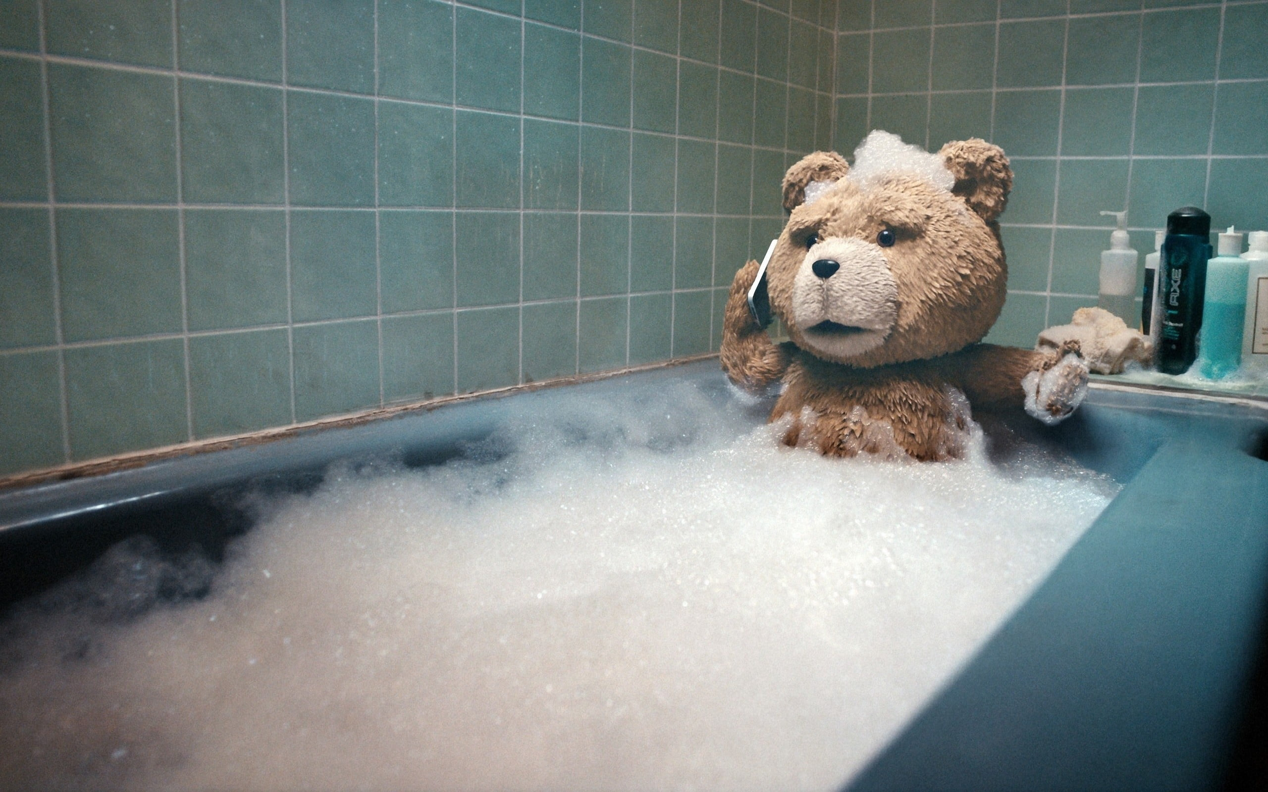 Ted on bath tub holding smartphone movie scene HD wallpaper 2560x1600