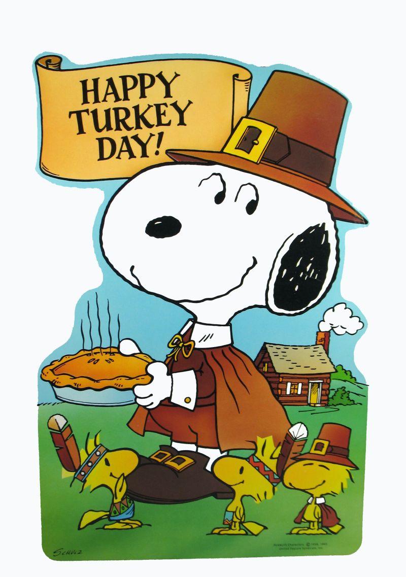 Home Holidays Thanksgiving Snoopy Thanksgiving Desktop 800x1137