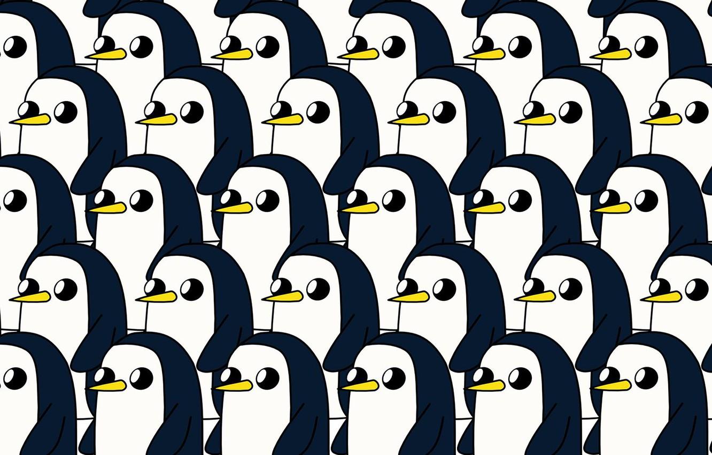 Wallpaper Toon Cartoon Penguin Character Adventure Time 1332x850