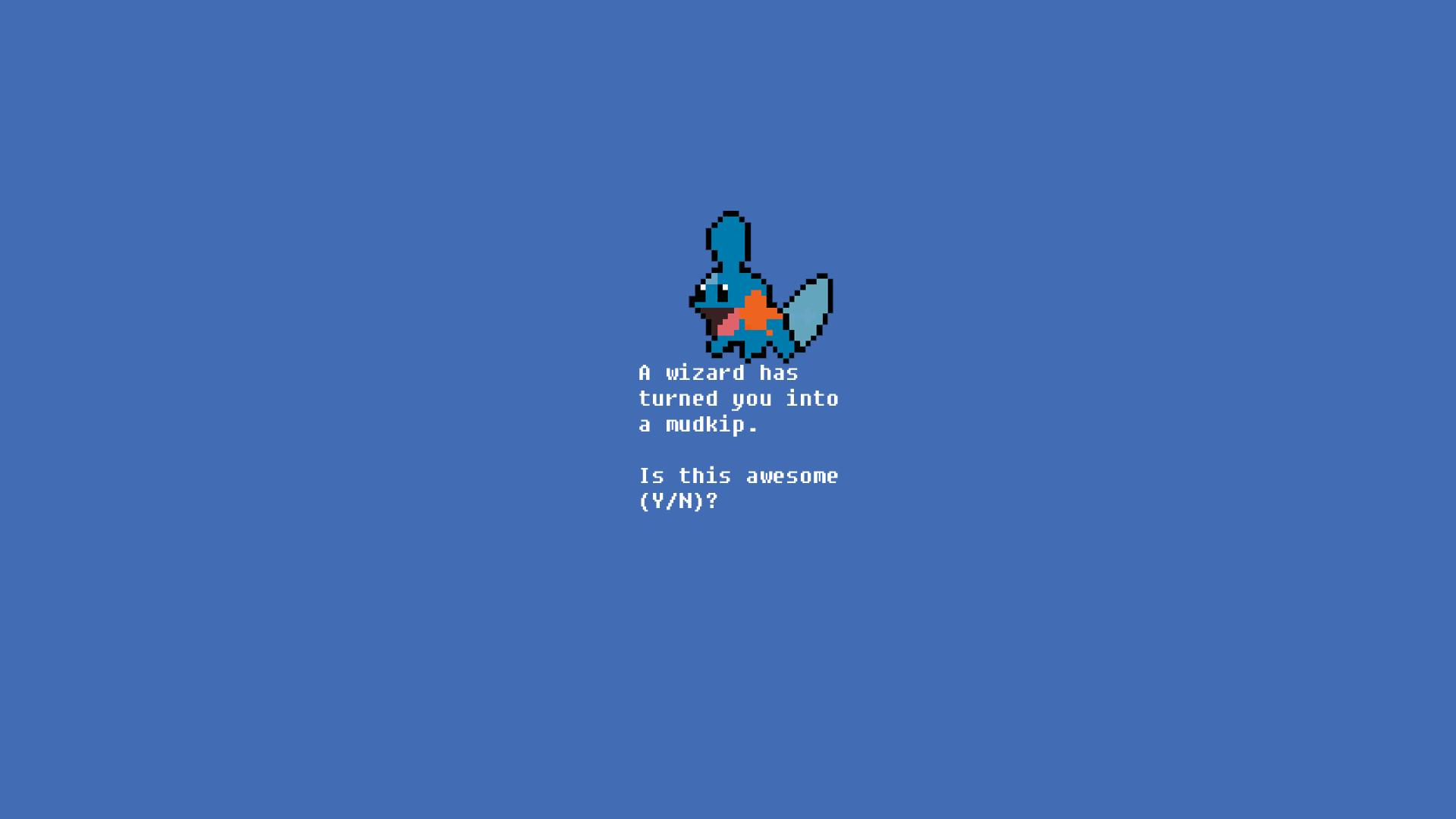Pokemon Mudkip Wallpaper 1920x1080 Pokemon Mudkip 1920x1080