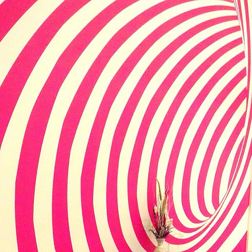 balikpapan instabpn instagramhub pink circle wallpaper instagram 500x500