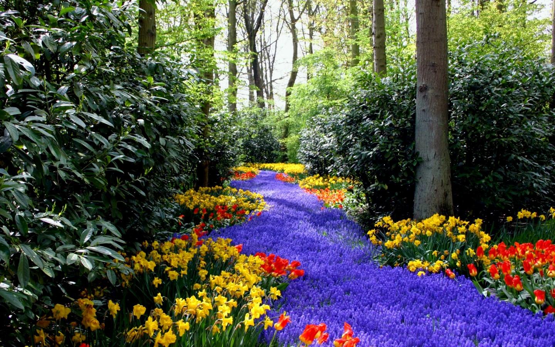 48 Most Popular Wallpapers For Desktop On Wallpapersafari: [48+] Free Spring Scenic Wallpaper On WallpaperSafari