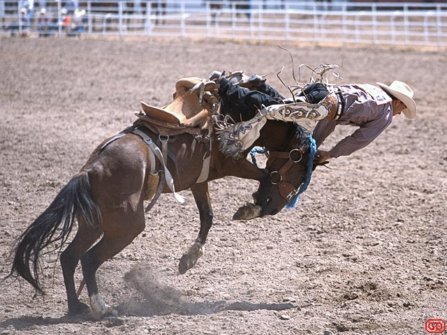 Rodeo Wallpaper During a wyoming rodeo 640x480