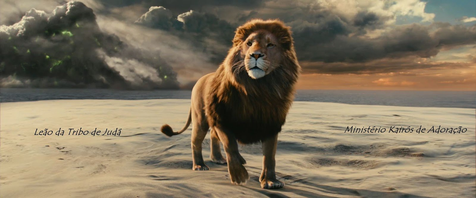 Free Download Aslan Lion 3 Chronicles Of Narnia Voyage Of The Dawn