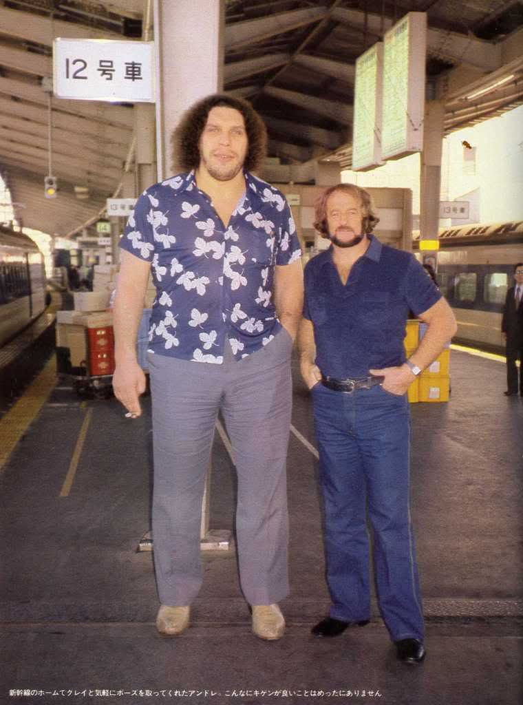 WWE WALLPAPERS Andre the giant wwe andre the giant 760x1024
