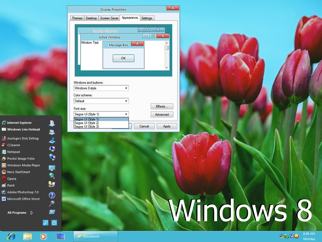Windows 8 Release Preview by Vher528 1032x774