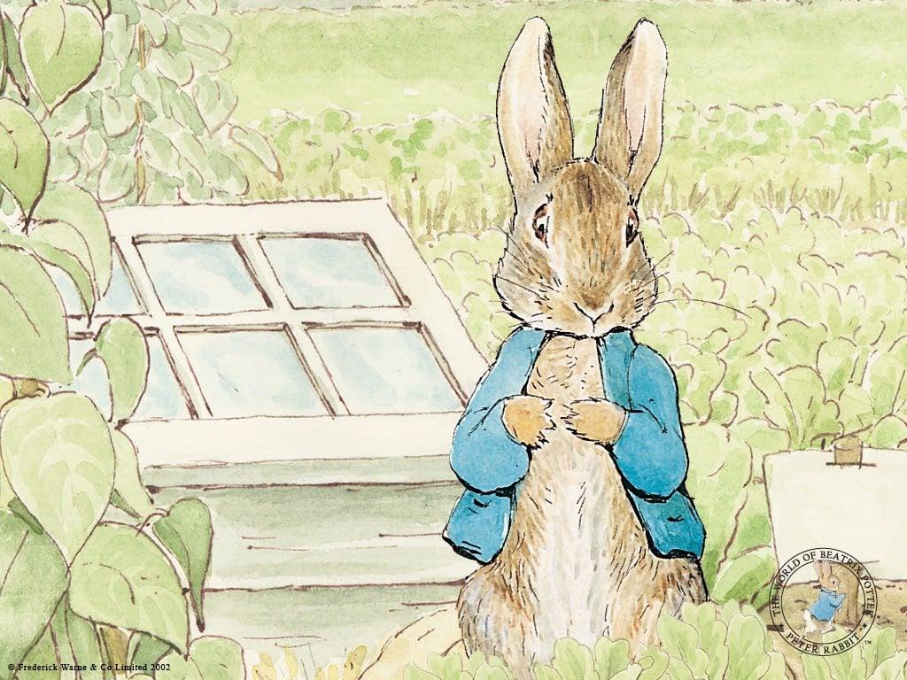 Peter Rabbit Wallpaper - WallpaperSafari
