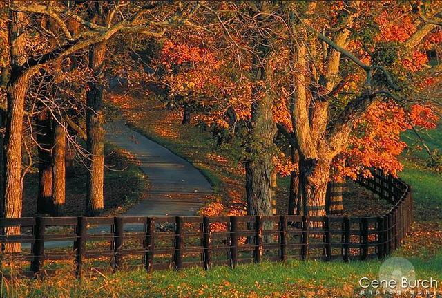 Farm scenes wallpaper wallpapersafari - Pics of fall scenes ...