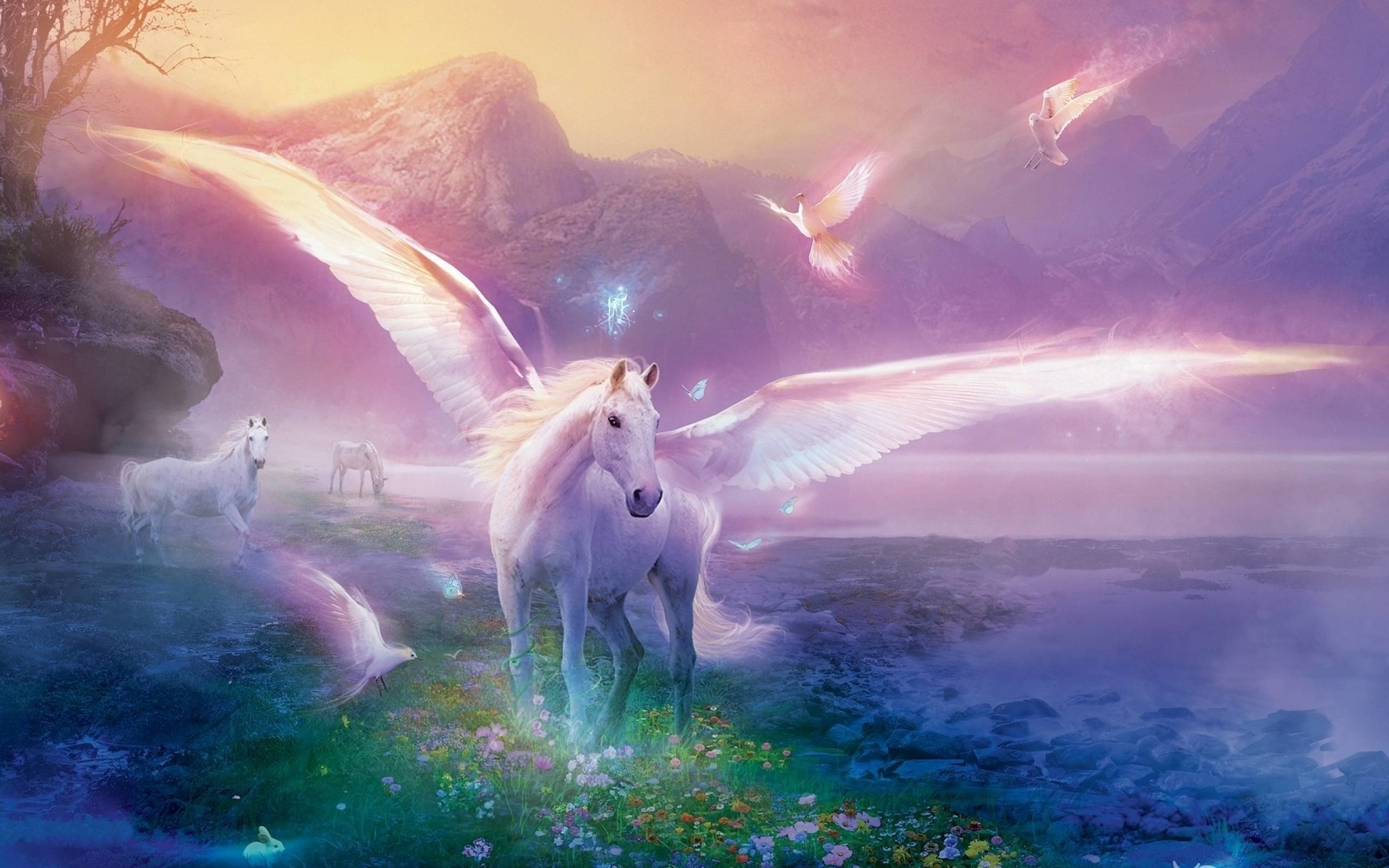 Unicorn Backgrounds for Desktop 69 images 2560x1600