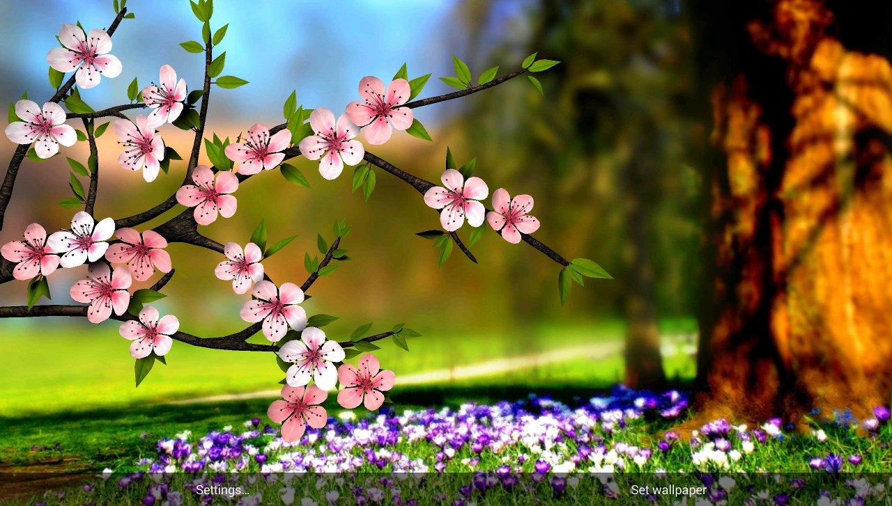 Spring Flower Wallpaper Hd 3d Wallpapersafari