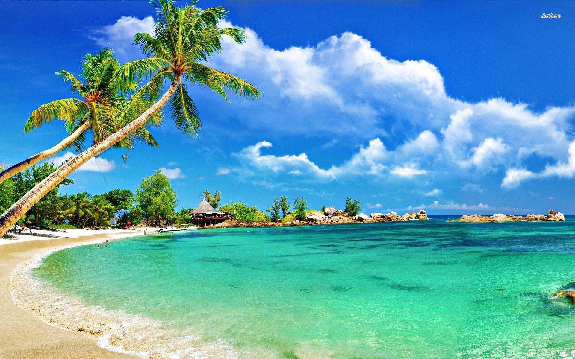 Tropical Beach Wallpapers Desktop 1920x1200