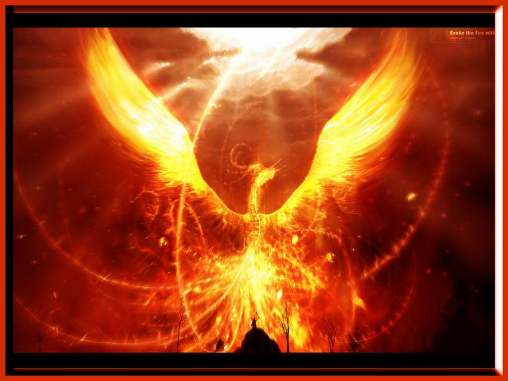 Fire Dragon Wallpaper Related Keywords amp Suggestions 1024x768