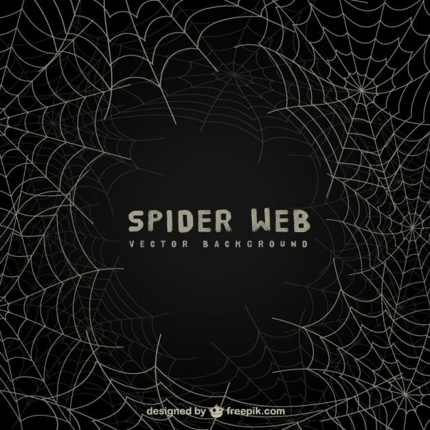 Spider web background on blackboard Vector Download 626x626