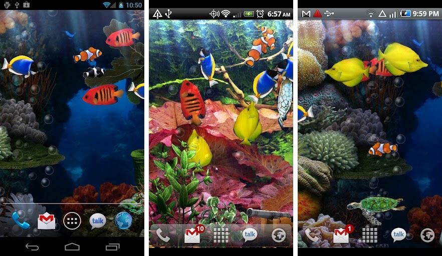 best aquarium fish live wallpapers android aquarium live wallpaper 882x512