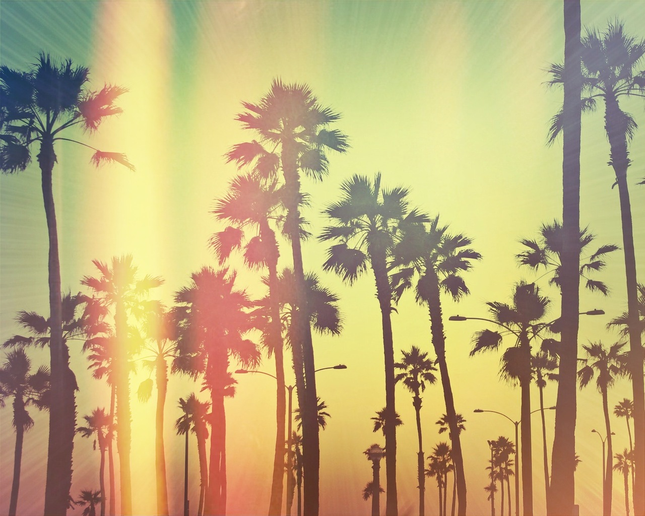California Tumblr Wallpaper Images Pictures   Becuo 1280x1024