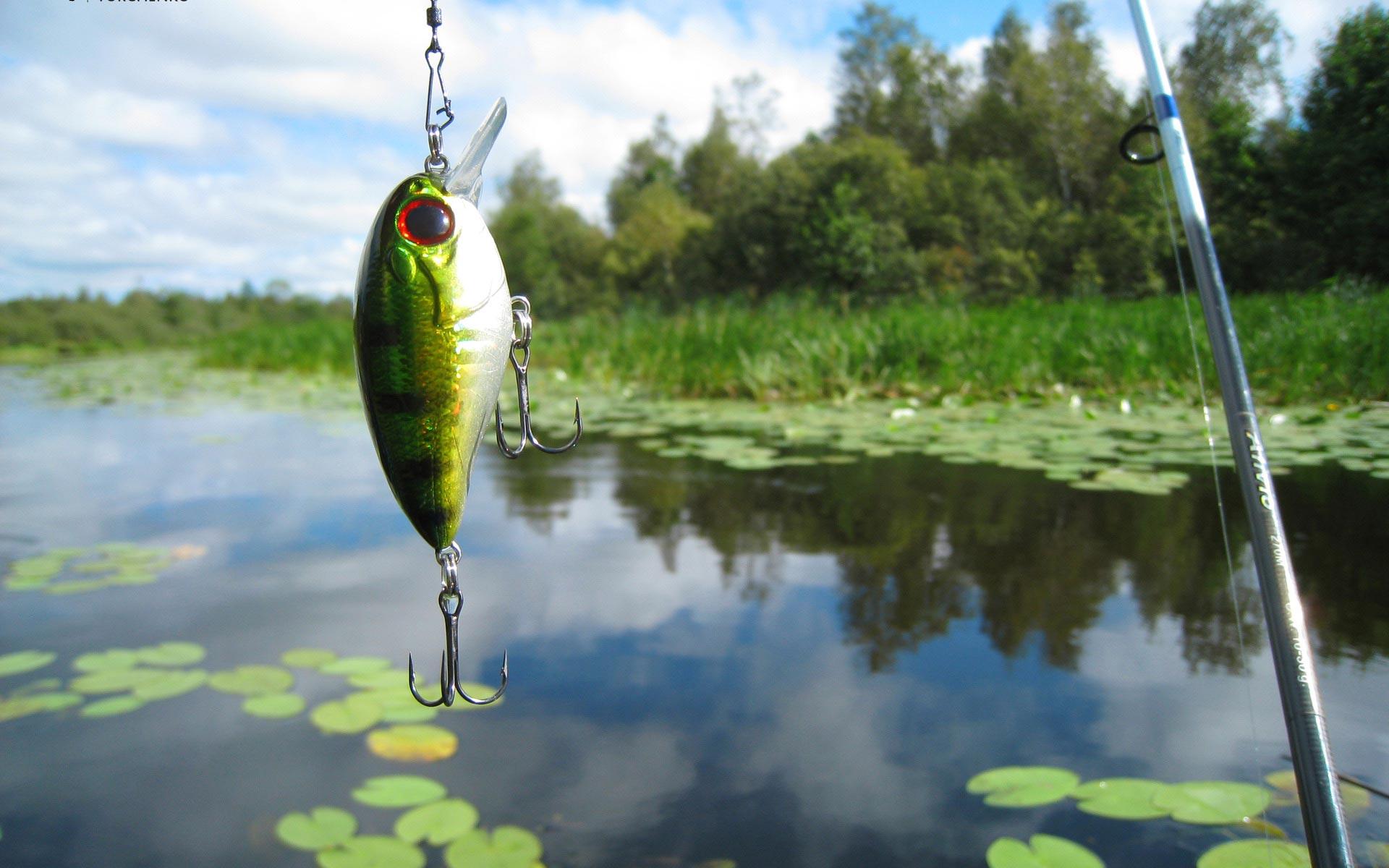 Fishing Wallpaper HD 1920x1200