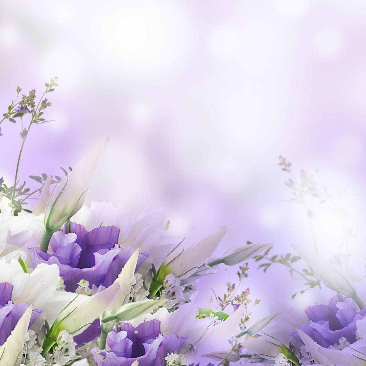 Pics Photos   Funeral Background 1200x1200