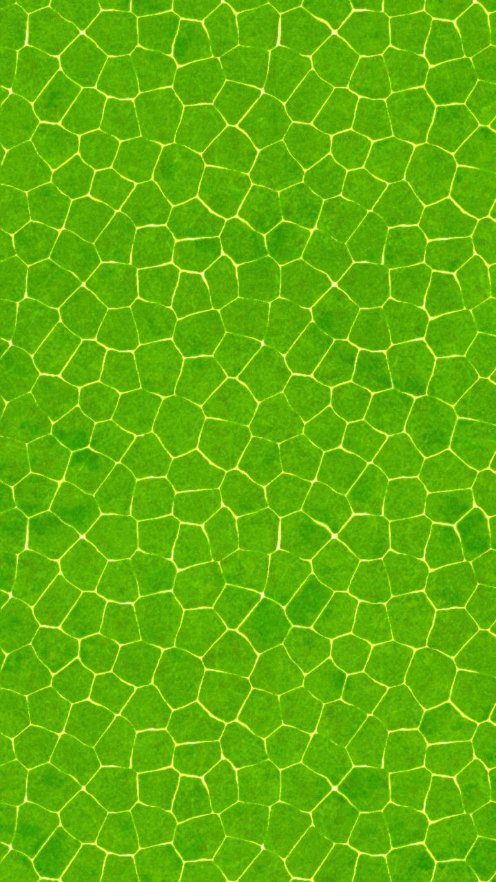 download abstract gree wallpaper for samsung galaxy 720x1280