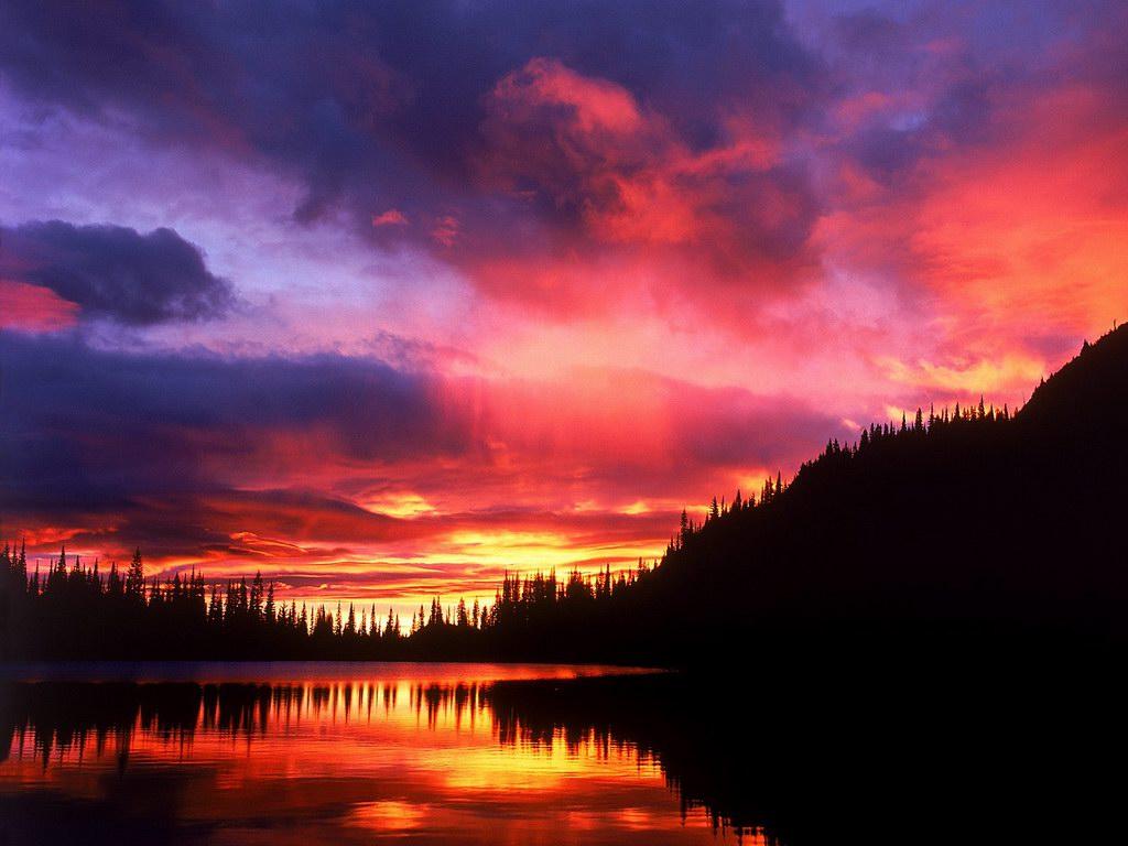 Pink Sunset Backgrounds wallpaper wallpaper hd background desktop 1024x768